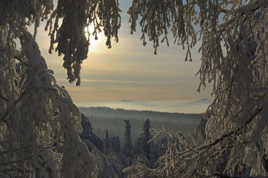 фото Михаила Михайлова